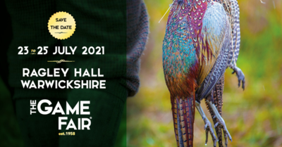 The Game Fair image #1